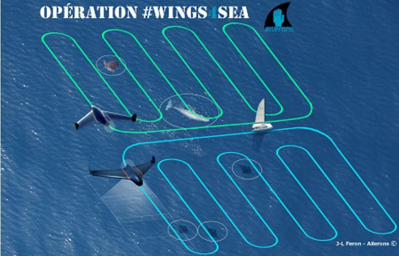 diable de mer drone