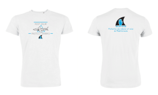 Ailerons white shark t-shirt